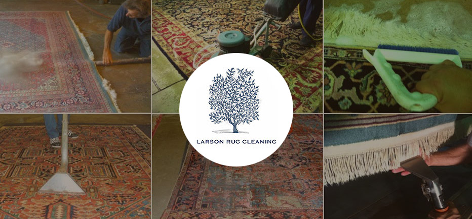 Welcome Larson Oriental Rug Cleaning Area Rug Cleaner